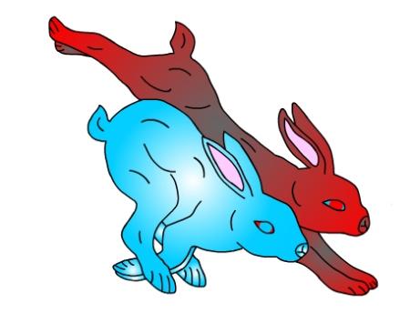 rabbits-running